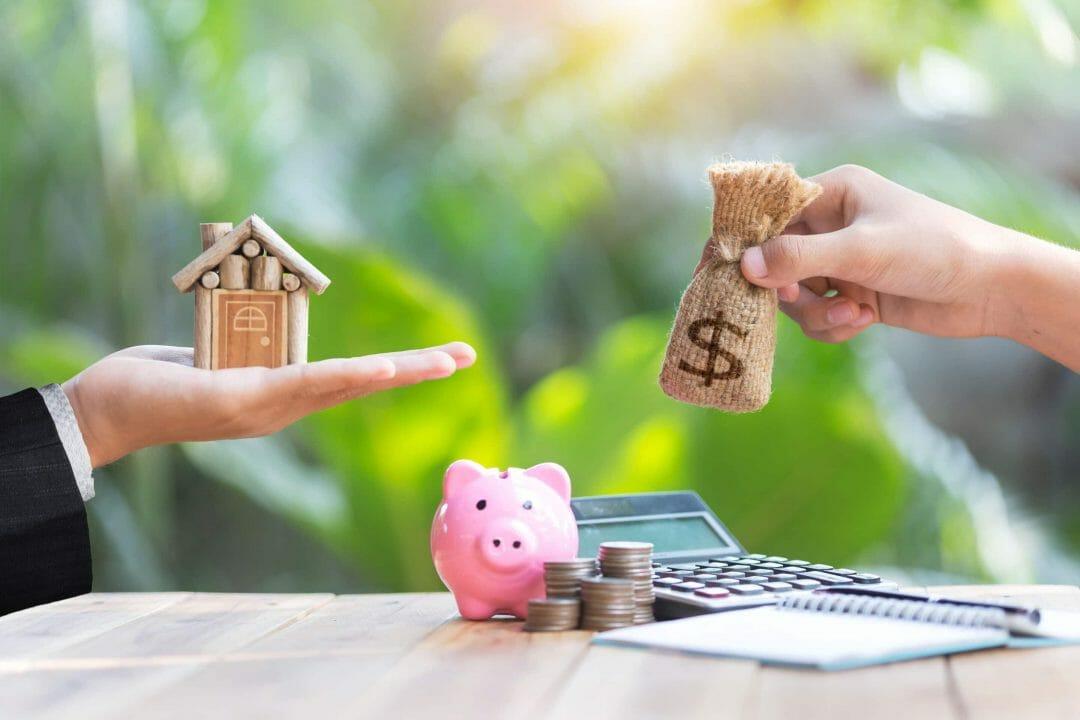 IEF vide sanitaire maison offre 1 euro expert