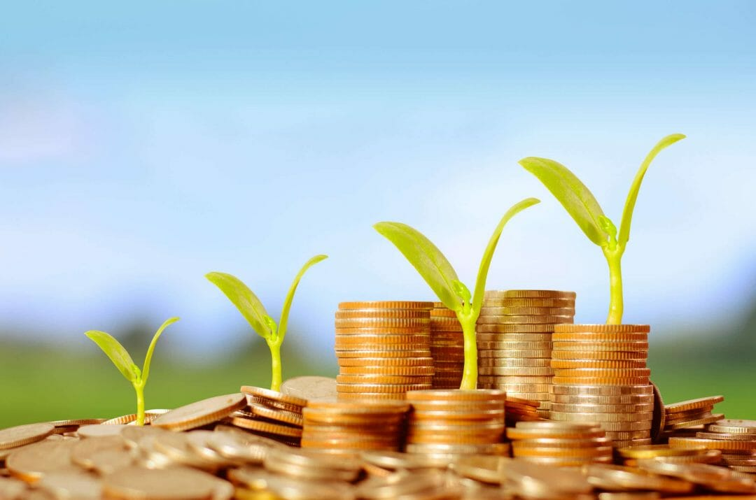 Programme aide financière isolation 1 euro cave
